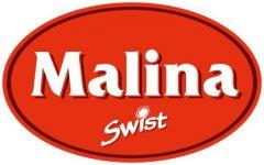 Swist Malina keg 50L